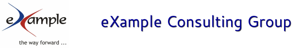 eXample Consulting Group - Strategy, Process, Analytics and E-Business - Balanced Scorecard, Lean Six Sigma. Net Promoter Score, Leadership Development Agile Scrum Project Management and Big Data Predictive Analytics Consulting, Advisory, Training and Cer